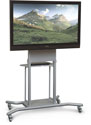 Elevation Mobile Flat Panel Stand
